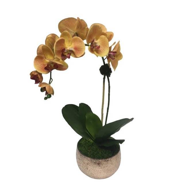 Ivy Guild Faux Flowers