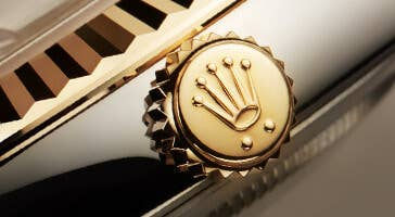 The Rolex Collection of Watches